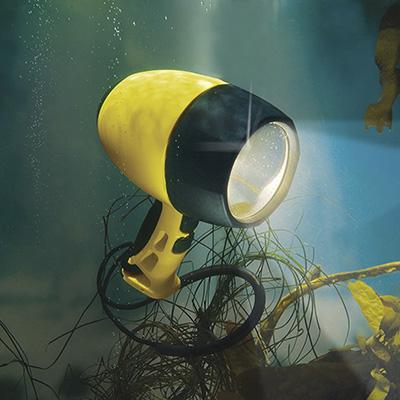Pelican Nemo 4300N Dive Light Flashlight