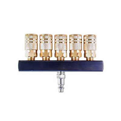 """River 5-Way, Air Manifold with 1/4"""" Industrial ARO Type Air Couplings"""